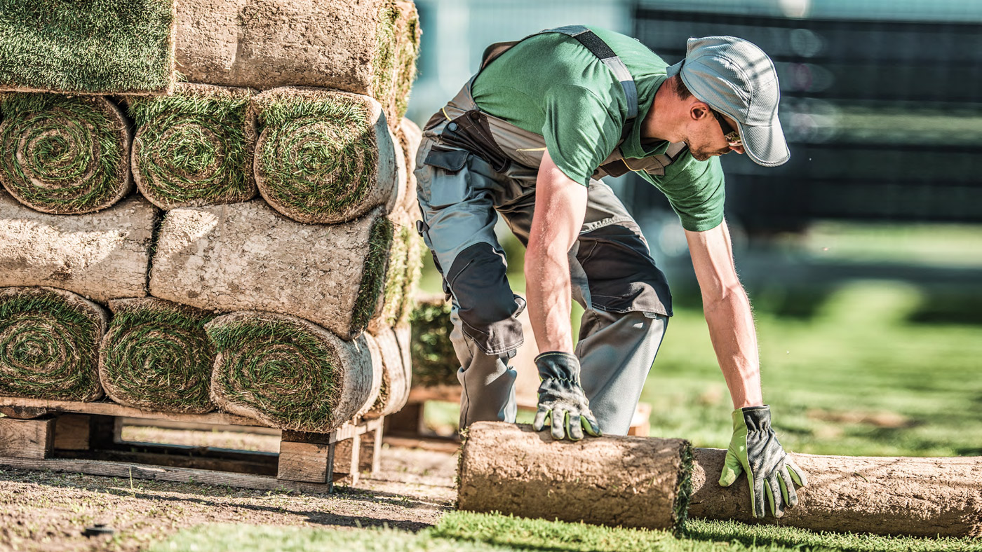 Landscaping article