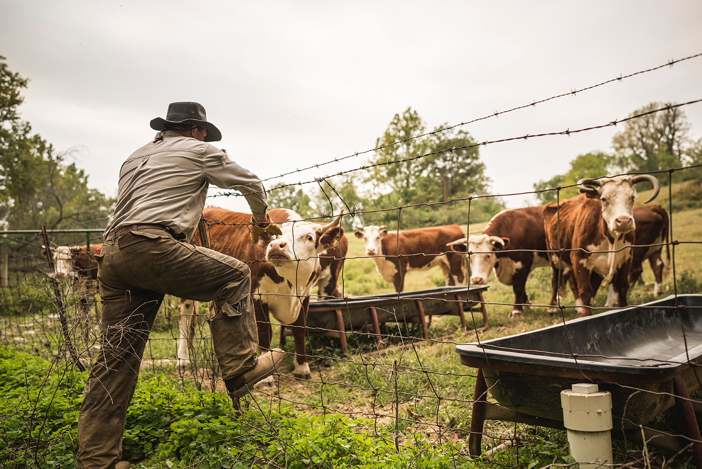 Farmer boots article